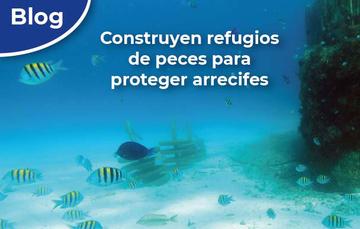 Refugios de peces