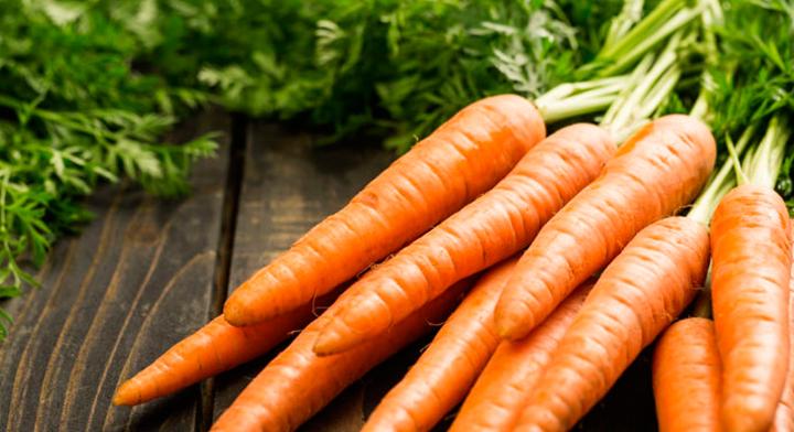 Quieres Ver Bien Este Texto Consume Zanahoria Secretaria De Agricultura Y Desarrollo Rural Gobierno Gob Mx En un principio se comían sus tallos y hojas. consume zanahoria