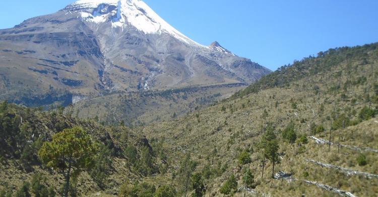 La CONAFOR,  la CONANP  la PROFEPA, empresas privadas y organizaciones civiles, de 2010 a 2018, se han invertido en el Parque Nacional Pico de Orizaba  81.9 millones de pesos para trabajos de restauración.