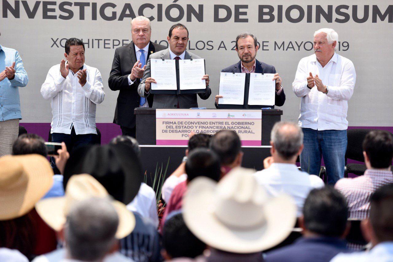 Firma convenio Gobierno Morelos