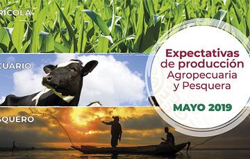 Al mes de mayo, la expectativa de producción nacional agropecuaria y pesquera para 2019 es de 234.4 millones de toneladas