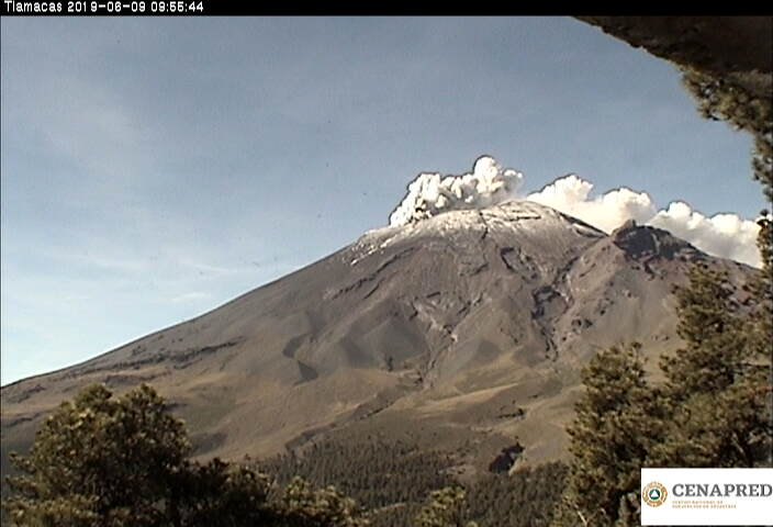 En las últimas 24 horas por medio de los sistemas de monitoreo del volcán Popocatépetl, se identificaron 71 exhalaciones, acompañadas de vapor de agua, gases y ligera cantidad de ceniza...