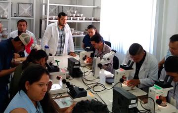 Taller de Avances en el Desarrollo de Tecnología de Control Biológico de la mosca del vinagre de alas manchadas Drosophila suzukii 2019