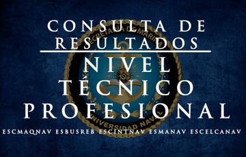 Resultados a Nivel Técnico Profesional