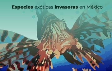 La introducción de especies exóticas afecta la biodiversidad del país.