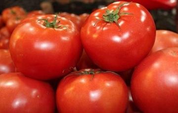 Realizan reunión SADER, ECONOMÍA, Gobierno de Sinaloa y productores de tomate para preparar estrategia a favor de los exportadores nacionales