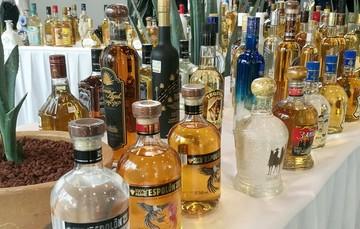 El Ministerio de Agricultura, Ganadería y Abastecimiento de Brasil formalizó el reconocimiento de la identidad y calidad del Tequila