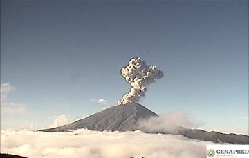 En las últimas 24 horas por medio de los sistemas de monitoreo del volcán Popocatépetl, se identificaron 233 exhalaciones, cinco explosiones y 389 minutos de tremor.