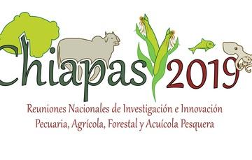 ¡Chiapas te espera!