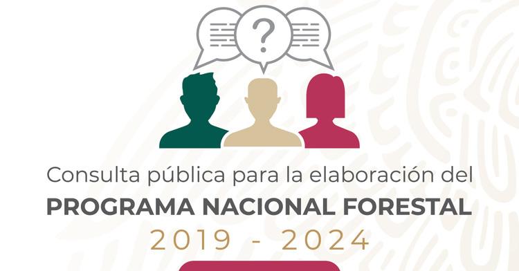 Consulta Pública para la elaboración del Programa Nacional Forestal 2019-2024