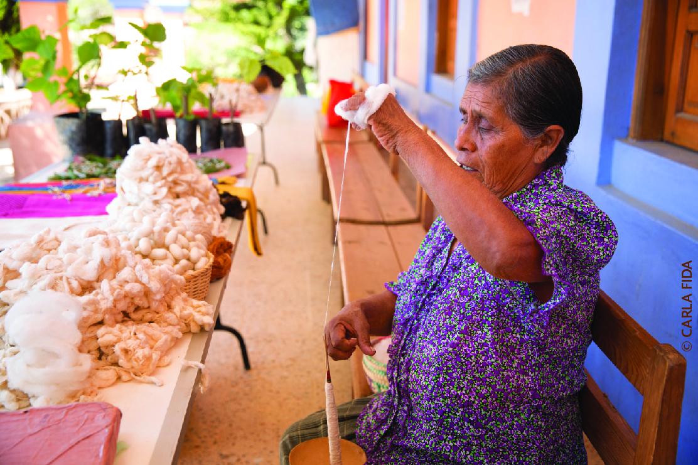La sericicultura o cultivo del árbol de las moras, la morera, y del gusano de seda que se alimenta solo de sus hojas fue introducido en México desde la Colonia.
