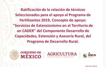 """TEXTO:Ratificación de la relación de técnicos seleccionados para el apoyo al Programa de Fertilizantes 2019, Concepto de apoyo Concepto de Apoyo: """"Servicios de Extensionismo en el Territorio de un CADER"""" del Componente Desarrollo de Capacidades, Extensión"""