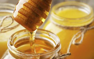 La producción de miel en México es de alta calidad y es de las más cotizadas en el mundo