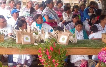 Comulgando saberes: una propuesta de enriquecimiento a la cosecha