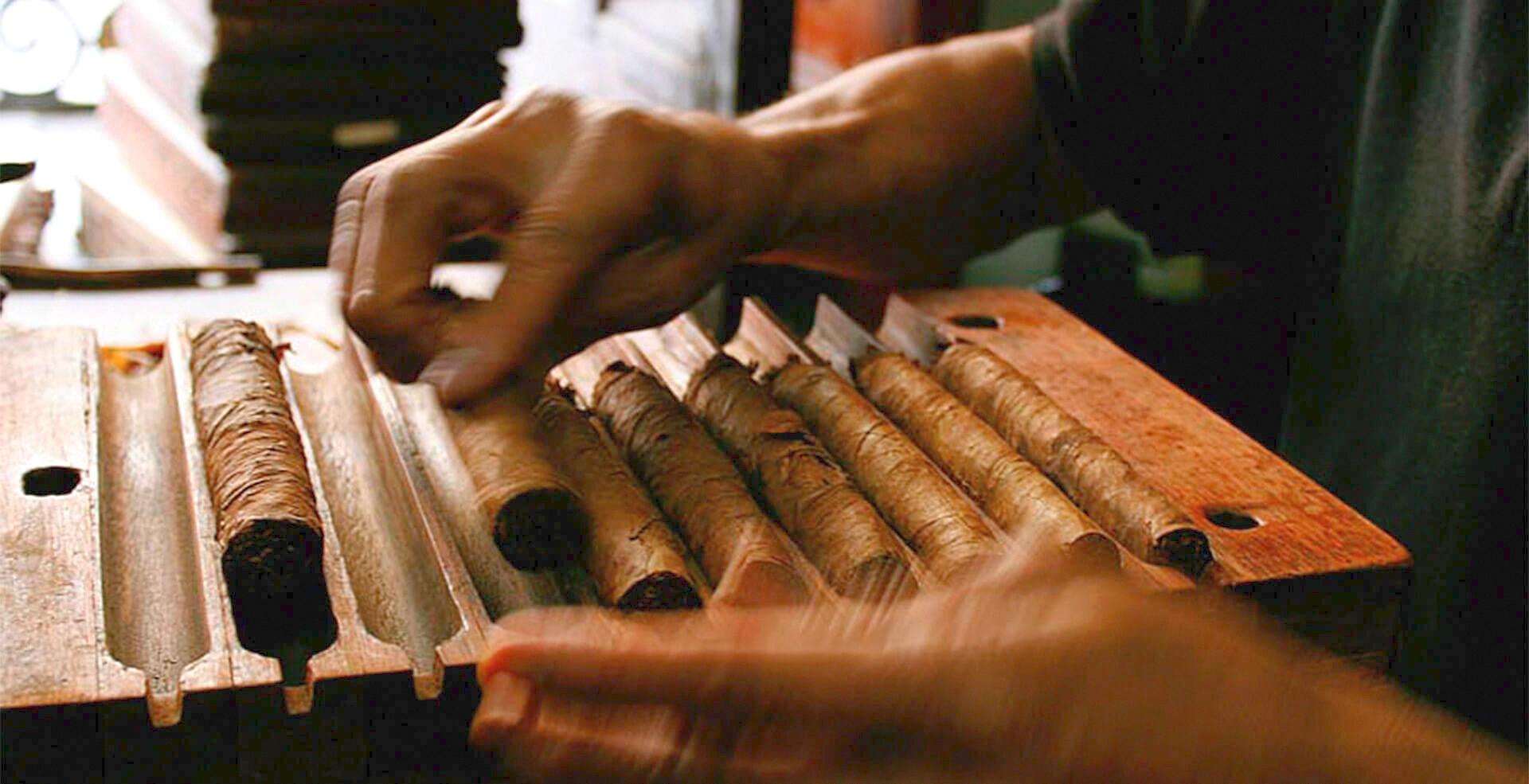 Talleres de elaboración de puros, Coscomatepec de Bravo, Veracruz