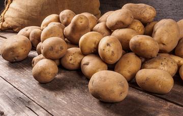 La principal función de la papa es almacenar nutrientes. Además son los tubérculos con el mayor contenido de proteínas.