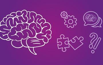 Cerebro y funciones.