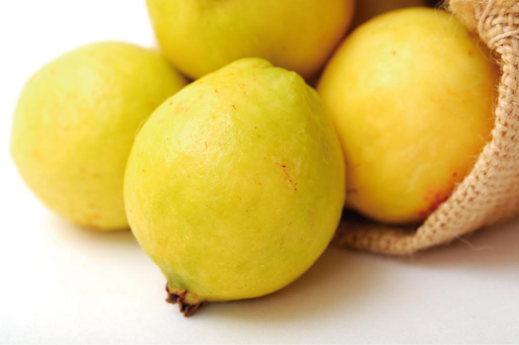 La cosecha manual garantiza que la selección sea la adecuada para que el fruto alcance el grado de madurez óptimo para su comercialización.