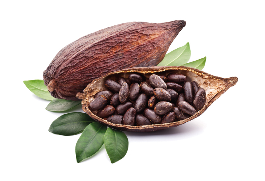 El 25 de Noviembre de 2016, se decretó producto con Denominación de  Origen al cacao cultivado en la Región Grijalva de Tabasco