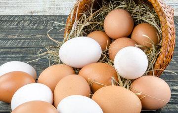 El color del cascarón del huevo (blanco o marrón) dependerá de la raza de la gallina, en tanto que la tonalidad de la yema es la que resulta de la alimentación del ave.