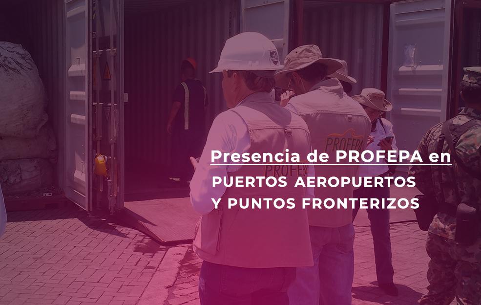 Presencia de Profepa en Puertos Aeropuertos y Puntos Fronterizos
