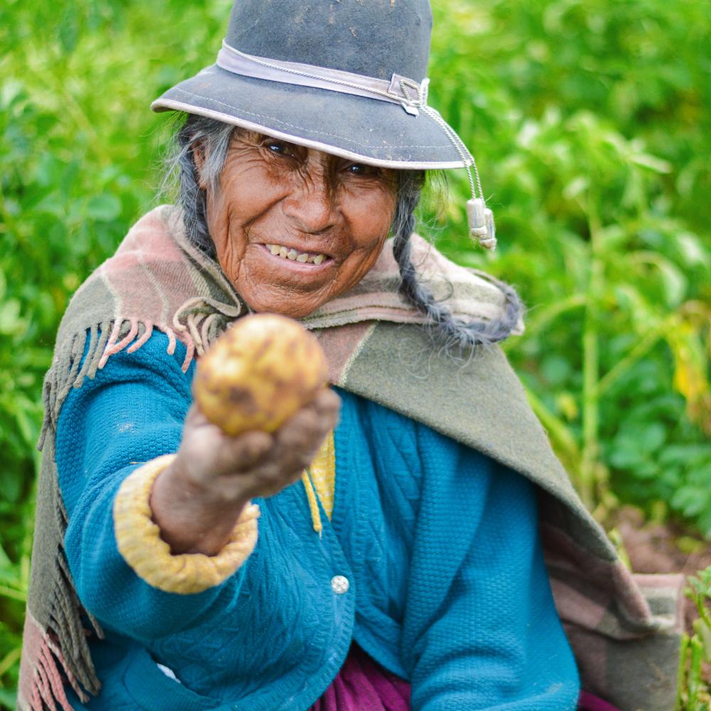 En nuestro país, el principal cultivo en el que participan las mujeres es maíz grano, con un 16% del total de la producción.
