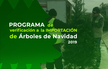 Programa de Verificación a la Importación de Árboles de Navidad