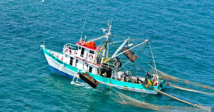 Pesca mexicana