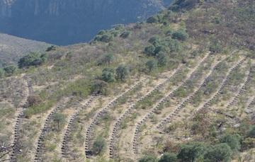 Obras de restauración en el Cerro de los Piñones, Juchipila, Zac.