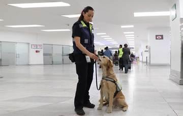 Inspectora del Senasica en el Aeropuerto Internacional de la Ciudad de México.