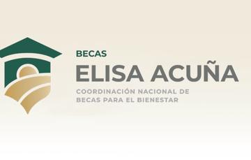 Apoya a estudiantes, egresados y docentes de instituciones públicas de Educación Superior, para que continúen su profesionalización en igualdad de condiciones.