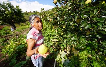 Con acciones emprendidas ya por el gobierno mexicano es posible alcanzar al menos 10 de los 17 objetivos de la Agenda 2030, abatir la pobreza y dotar a los marginados de vías de salvación.