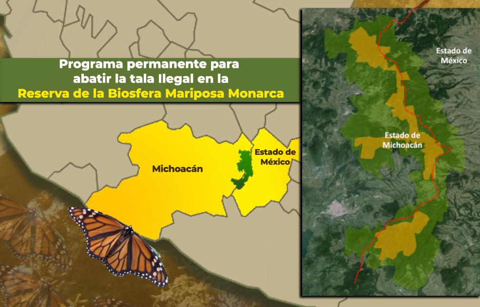 Programa permanente para abatir la tala Ilegal  en la Reserva de la Biosfera Mariposa Monarca