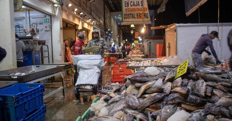 Las autoridades de Inspección y Vigilancia de la Conapesca realizaron siete mil 930 verificaciones en el principal centro de distribución nacional de pescados y mariscos, ubicado al oriente de la Ciudad de México.