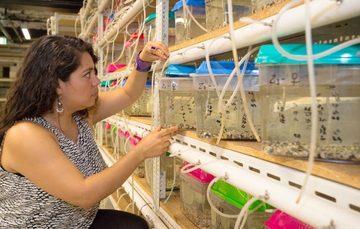 Mujeres y hombres de nuestro país han destacado en el conocimiento y desarrollo de las ciencias biológicas, tanto en las aulas, como en el trabajo de campo, donde el tema central es la vida.