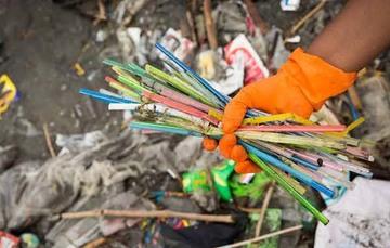 La enorme cantidad de popotes de plástico que se arrojan al medio ambiente representan una amenaza letal para la vida marina. Cientos de tortugas y peces mueren a consecuencia de estos objetos de un solo uso.