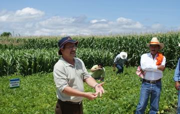 El investigador trabaja en equipo con productores de áreas de alta marginación