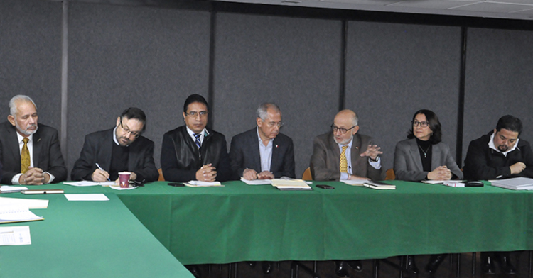 Comité Sectorial de Recursos Genéticos para la Alimentación y la Agricultura.