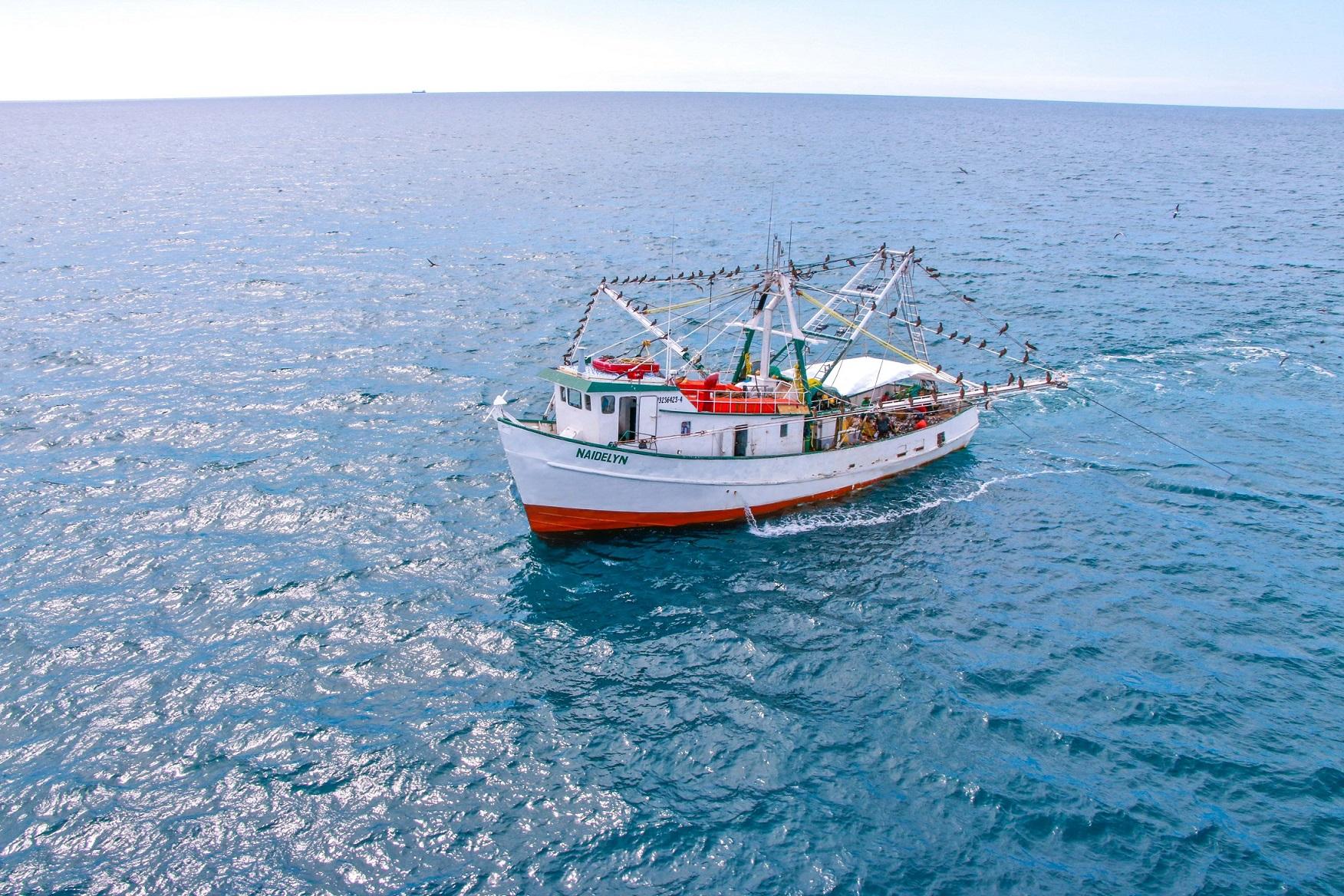 El aprovechamiento del camarón constituye una de las pesquerías comerciales de relevancia económica y social.