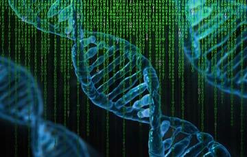El monitoreo de la diversidad genética es importante para la conservación de especies