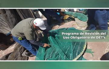 Programa de Revisión del Uso Obligatorio de Dispositivos Excluidores de Tortugas (DET's).