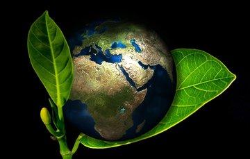 """La ecología científica y la ecología sagrada  coinciden cada vez más en que """"todo daño que se inflige a la naturaleza se revierte. La humanidad debe reconstituirse a partir de su reconciliación con el universo natural."""