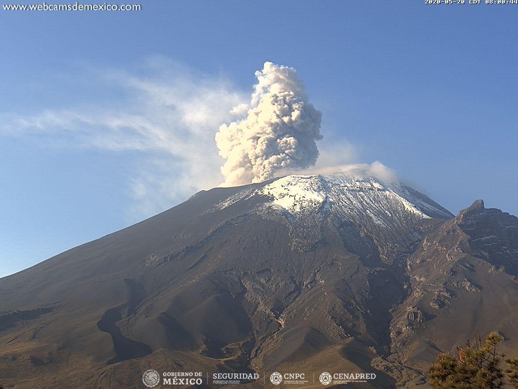 En las últimas 24 horas, mediante los sistemas de monitoreo del volcán Popocatépetl se identificaron 221 exhalaciones y 507 minutos de tremor.
