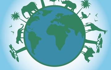 Un día para celebrar la biodiversidad y protegerla de los riesgos que corre.