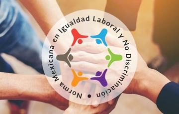 Logotipo de la Norma de Igualdad Laboral y No Discriminacion