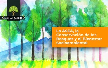 imagen ilustrativa de un bosque con el nombre del foro La ASEA, la conservación de los bosques y el bienestar socioambiental