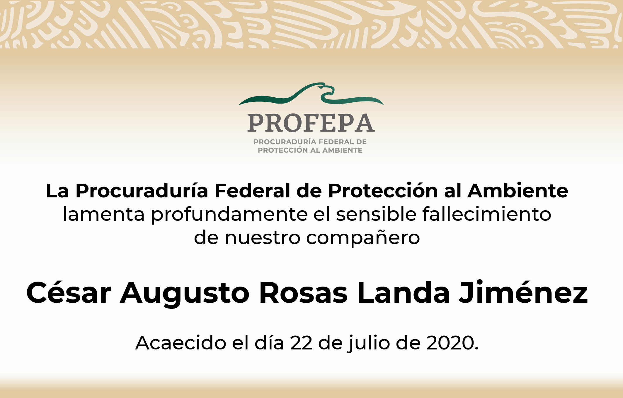 En memoria de César Augusto Rosas Landa Jiménez