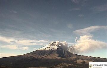 En las últimas 24 horas, mediante los sistemas de monitoreo del volcán Popocatépetl se identificaron 120 exhalaciones, algunas acompañadas de gases volcánicos y en ocasiones de ligeras cantidades de ceniza.