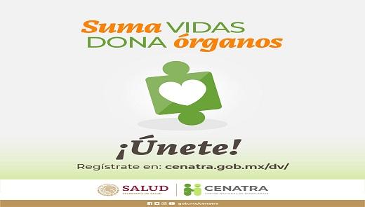 Material informativo sobre donación y trasplantes