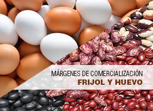 Márgenes de comercialización de frujol y huevo